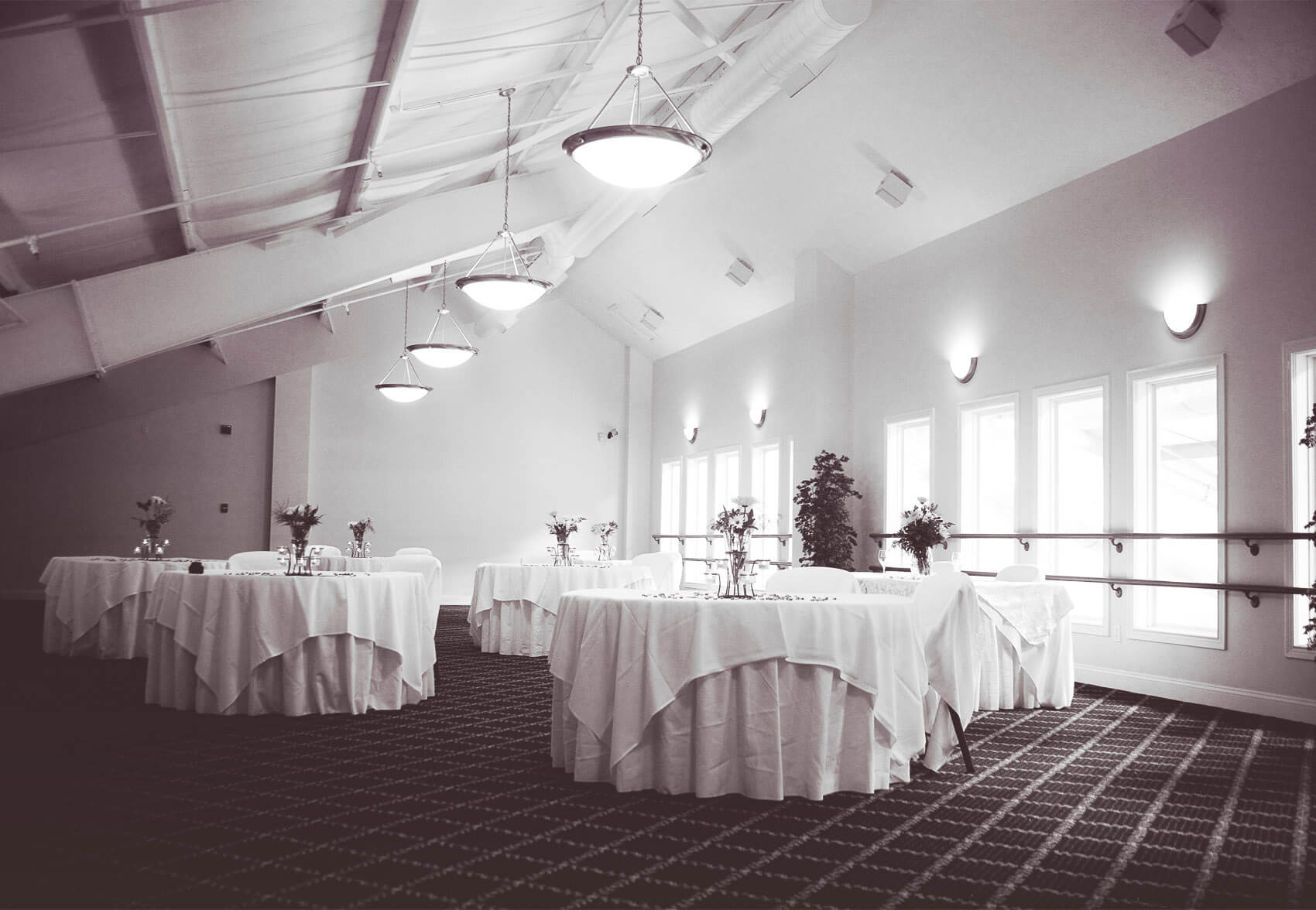 Venue in Bloomington - Millennium Banquet Hall 1